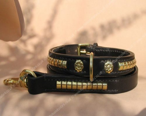 traditional staffordshire bull terrier collar