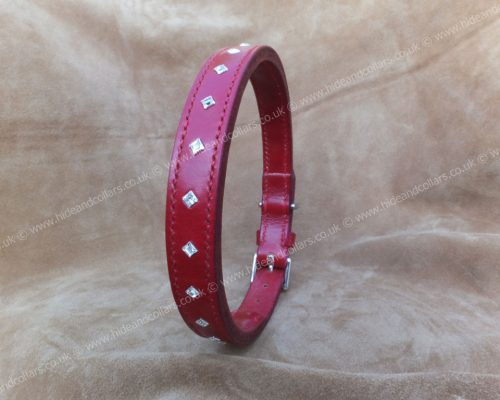 dog collar embellished with swarovski crystals