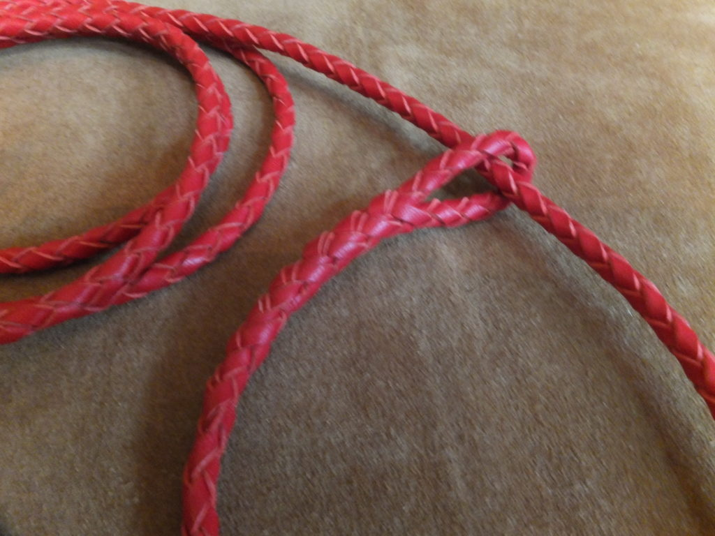 Red braided kangaroo slip lead
