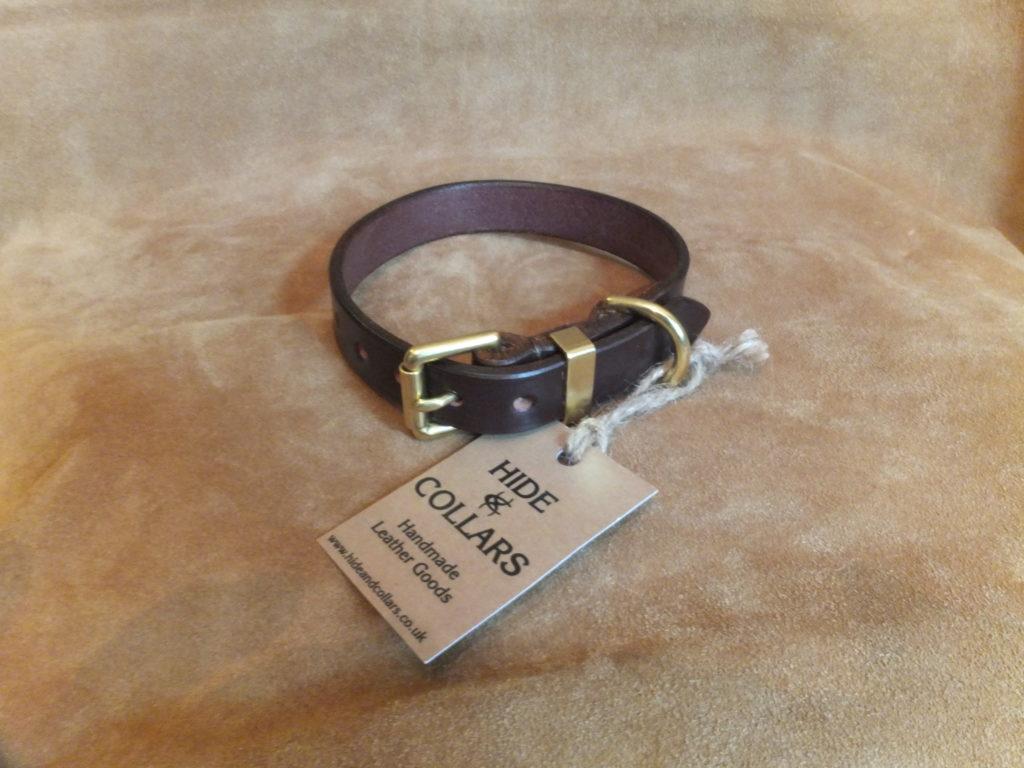 leather dog collar in Australian Nutt