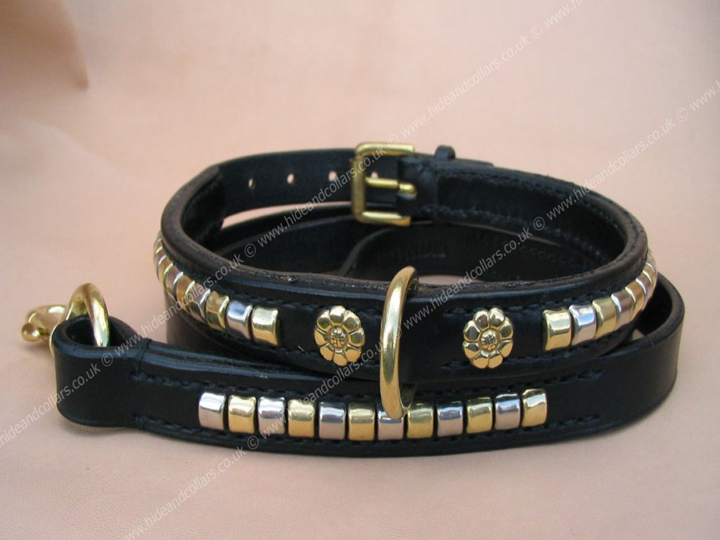 Staffordshire Bull Terrier Collars