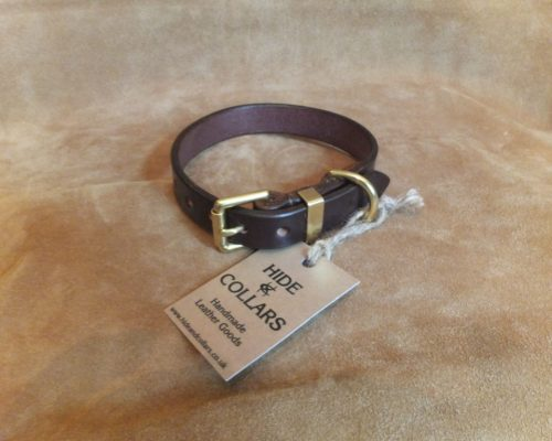 leather dog collar in Australian Nutt